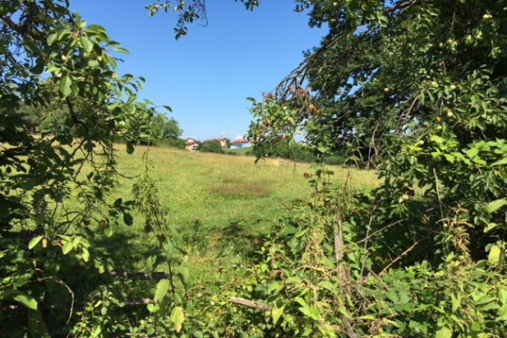 LAND IN REBROVAC FOR SALE